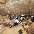 Atapuerca incluirá el próximo verano visitas especializadas a su flora y su fauna