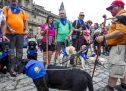 """La ceguera no es una """"piedra"""" en el Camino de Santiago"""