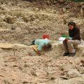 Descubren en Guatemala rastros de un primer colapso en la civilización maya