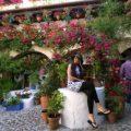 Los Patios de Córdoba celebra su primer lustro como Patrimonio Inmaterial de la Humanidad