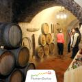 PATRIMONIO DUERO. Museo del Vino de Aranda de Duero