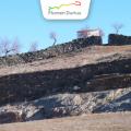 PATRIMONIO DUERO. Castillo, yacimiento y Rollo de Vilvestre
