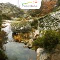 PATRIMONIO DUERO. Parque Natural de Alvão (Portugal)