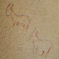 PATRIMONIO DUERO. Pinturas rupestres de la Malgarrida (Hinojosa de Duero, Salamanca)