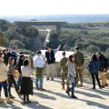 Los yacimientos de la sierra de Atapuerca ya se pueden observar desde los senderos botánicos