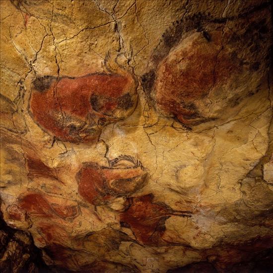 Cuevas Altamira- EFE- 28062013