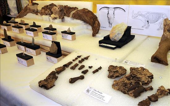 Arqueologia_PinilladelValle_EFE