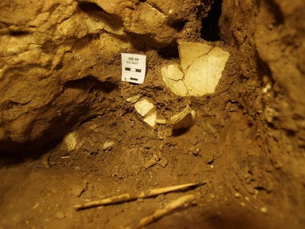 CanalPatrimonio_Craneo_Atapuerca_ICAL