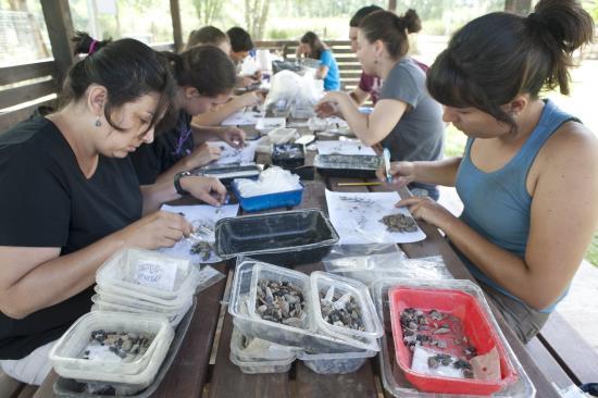 arqueólogos en Banyoles