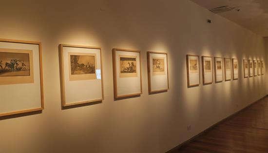 exposición Goya, Argentina