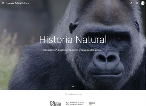 google-cultural_museos-historia-natural