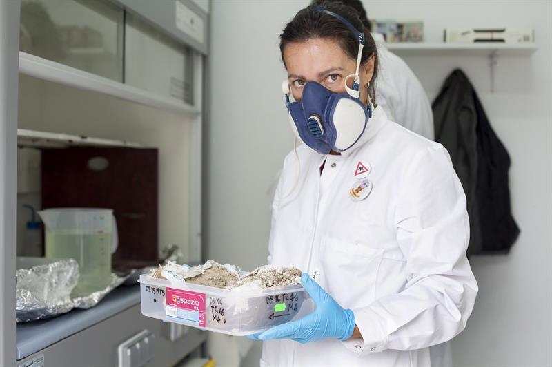 Paleochar, un proyecto financiado por el Consejo Europeo de Investigación