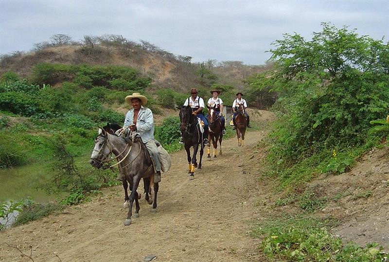 Seis parajes latinoamericanos se suman a la Red de Reservas de la Biosfera