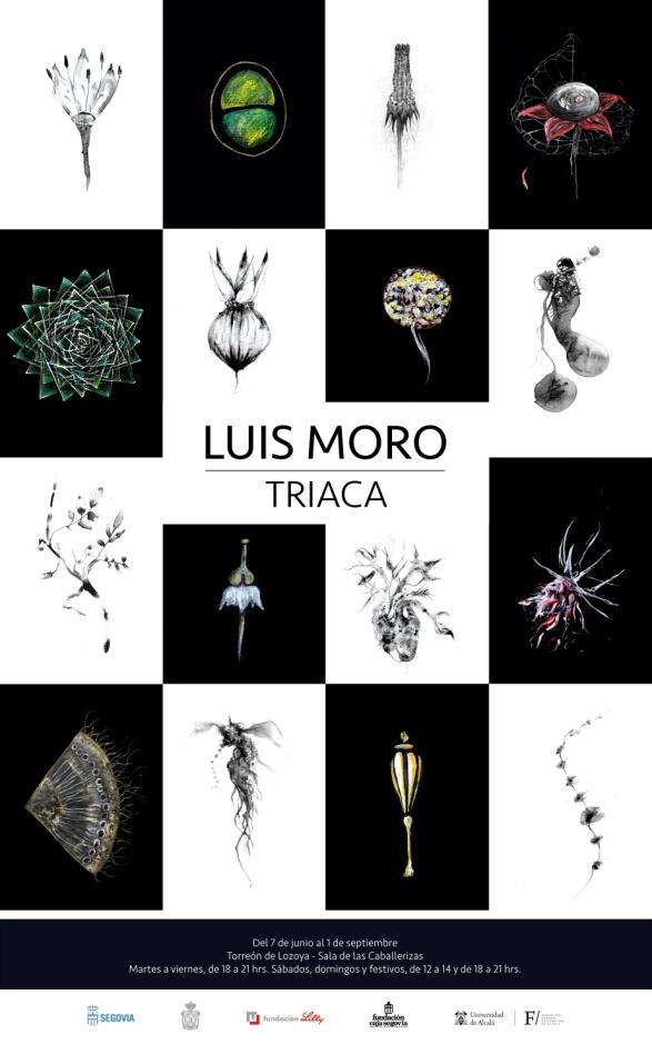 CanalPatrimonio_ Luis Moro_ Exposición Fundación Caja Segovia