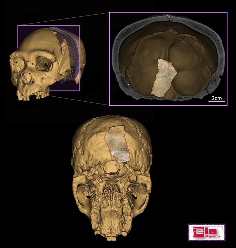 Balance de la campaña de excavaciones 2020 en los yacimientos de la sierra de Atapuerca