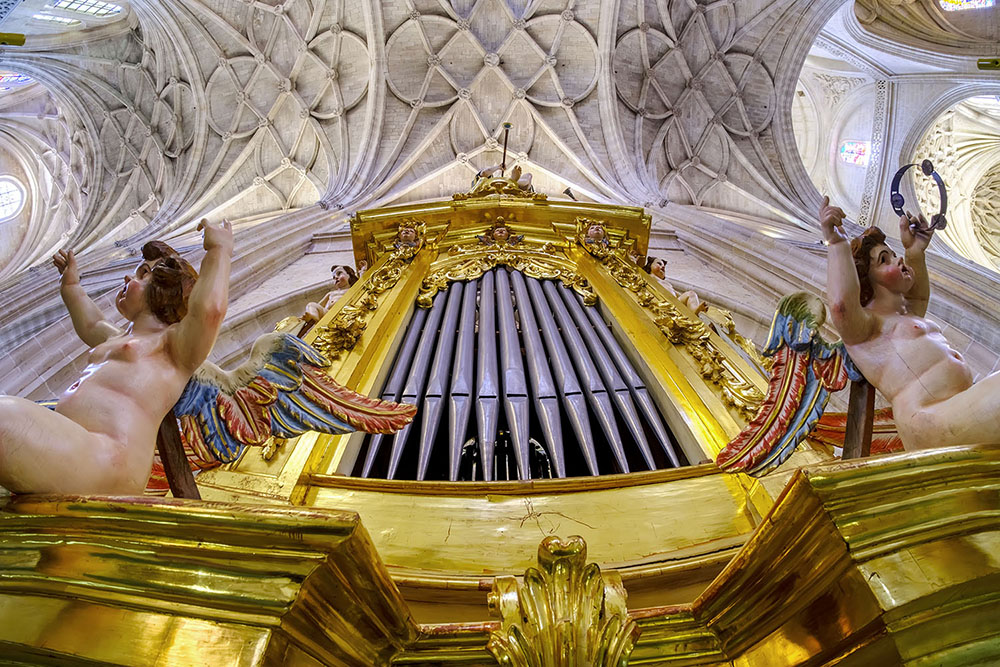 Inauguración de la restauración del órgano del Evangelio. Catedral de Segovia
